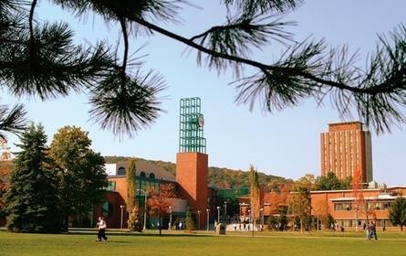 宾汉姆顿分校美国公立大学排名