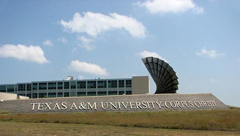 得克萨斯州农工大学