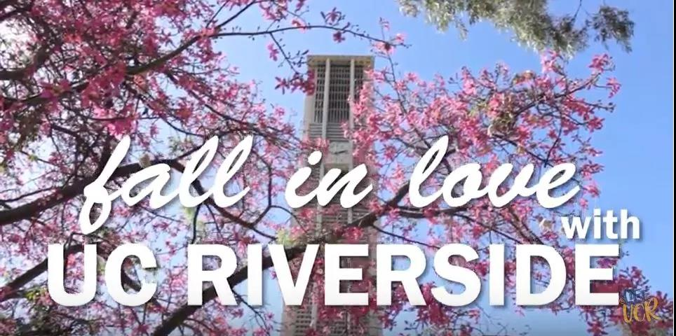 加州大学暑期体验,读万卷书,行万里路