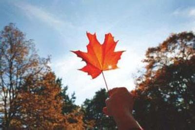 最关心的十个加拿大留学疑问,加拿大留学疑问,申请加拿大留学,加拿大教育中心