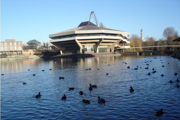 约克大学鸭子