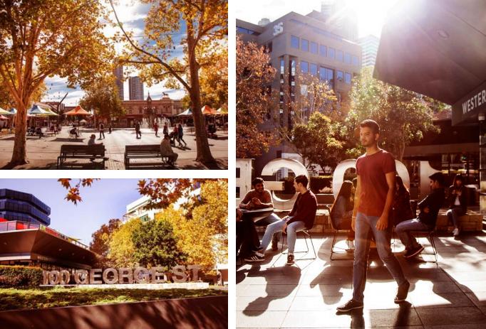 西悉尼大学国际学院