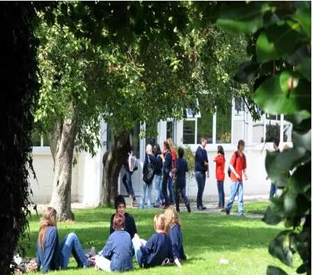 萨顿公园学校:毕业率近100%的爱尔兰私立中学