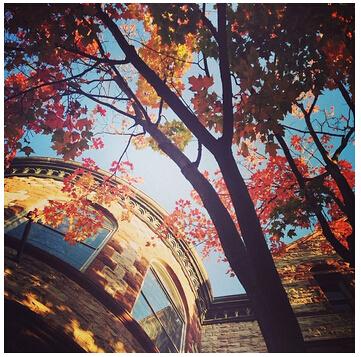 【有图有真相】探索留学生眼中的多伦多大学