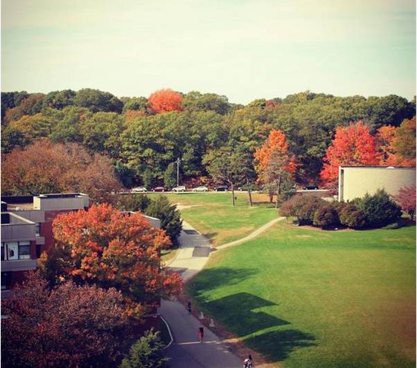 美国大学申请,布兰迪斯大学,美国波士顿名校,美国学术研究大学