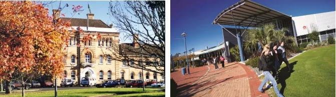 新西兰留学专业,新西兰热门专业,新西兰留学申请,新西兰院校推荐