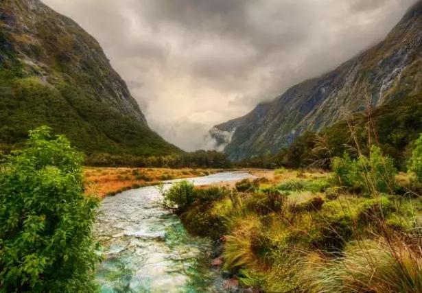 新西兰理工学院,新西兰理工院校推荐,新西兰雷火电竞下载移民,新西兰大学