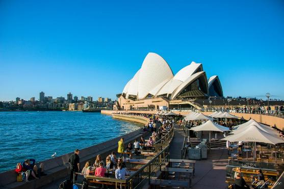 澳洲留学,本科背景,985大学,211大学