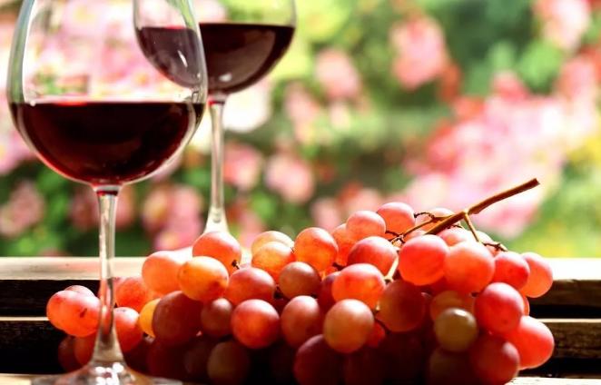 阿德莱德大学,葡萄酒专业,葡萄酿造硕士,澳洲硕士申请