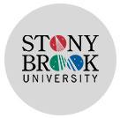 纽约州立大学石溪分校